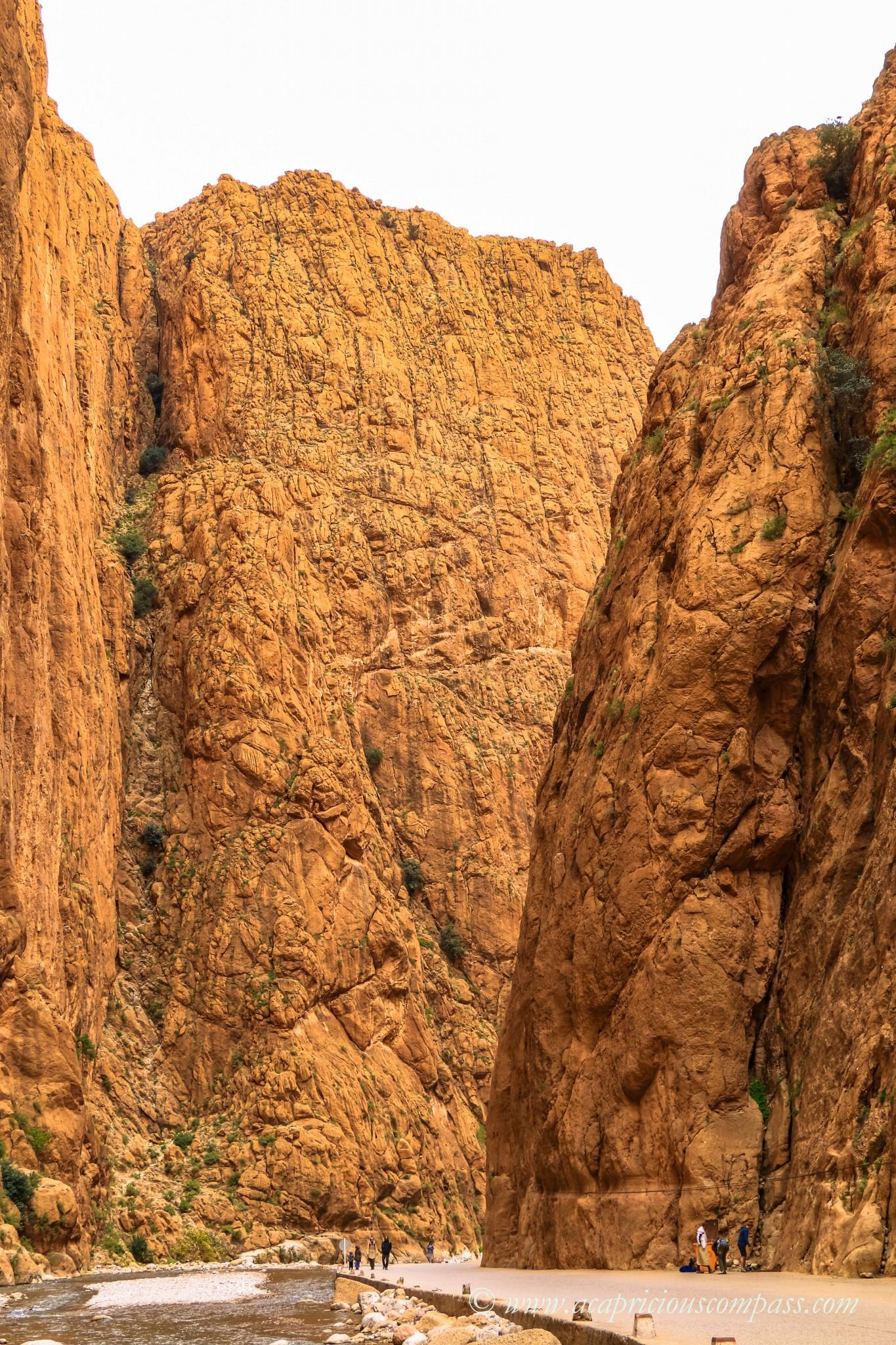 morocco road trip todra gorge