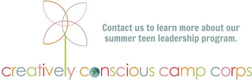 summer leadership program for teens in chicago