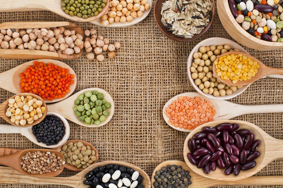 vegetarian-nutrition-protein1