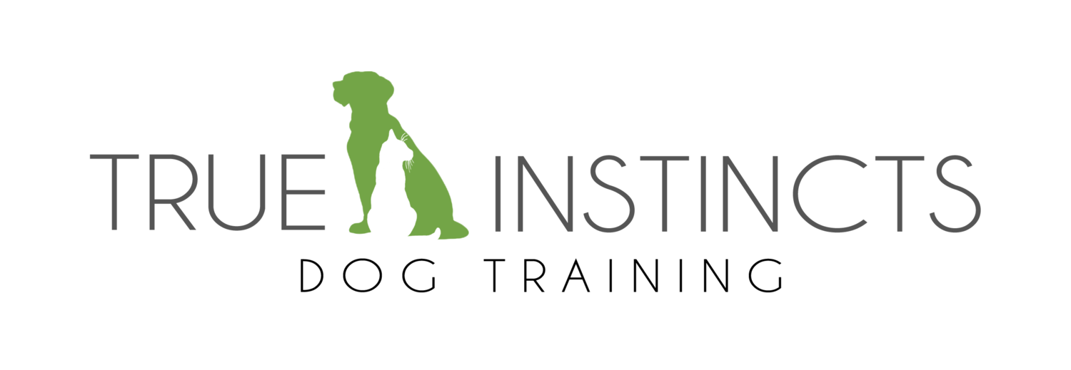 True Instincts Dog Training - Waterdown, On