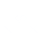 rsz_1transparent-white-all.png