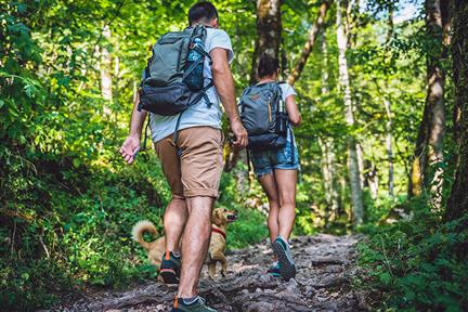 go-hiking-wp