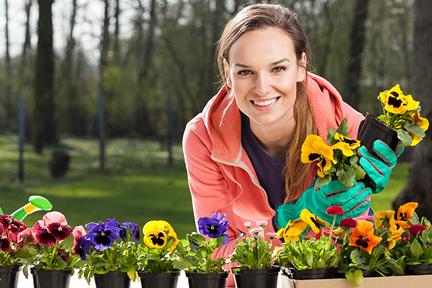 garden-allergies-wp