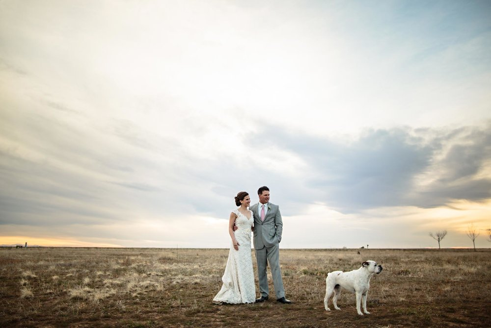 1629b-wedding-pictures-with-dog.jpg