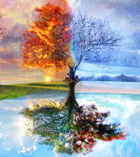 embracing seasons