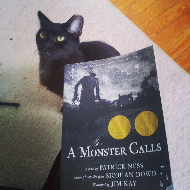 This is my read for tonight. Lucas, my fake feral foster, is trying to be helpful (by eating the book. Did you see the bottom right corner? not helpful, Lucas...)
