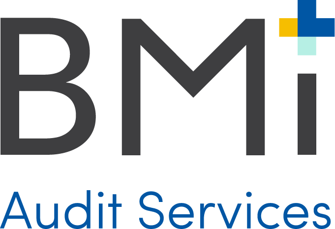 Medical + RX Audit — BMI Audit Solutions