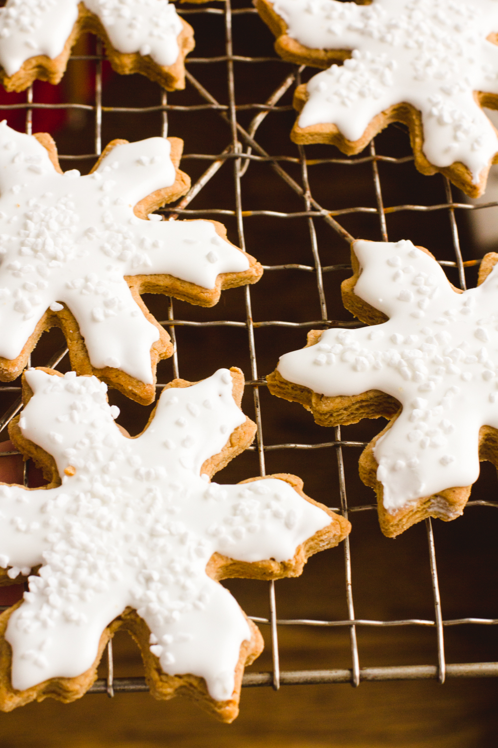 Frosted Gingerbread Cookies - Marisa Curatolo