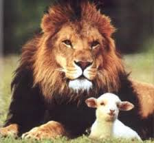 The lion and the lamb are images in the Bible to describe the strength and humility of God.