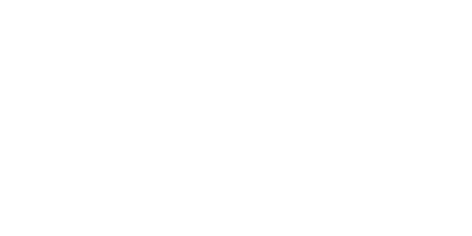 The Flauto d'Amore Project