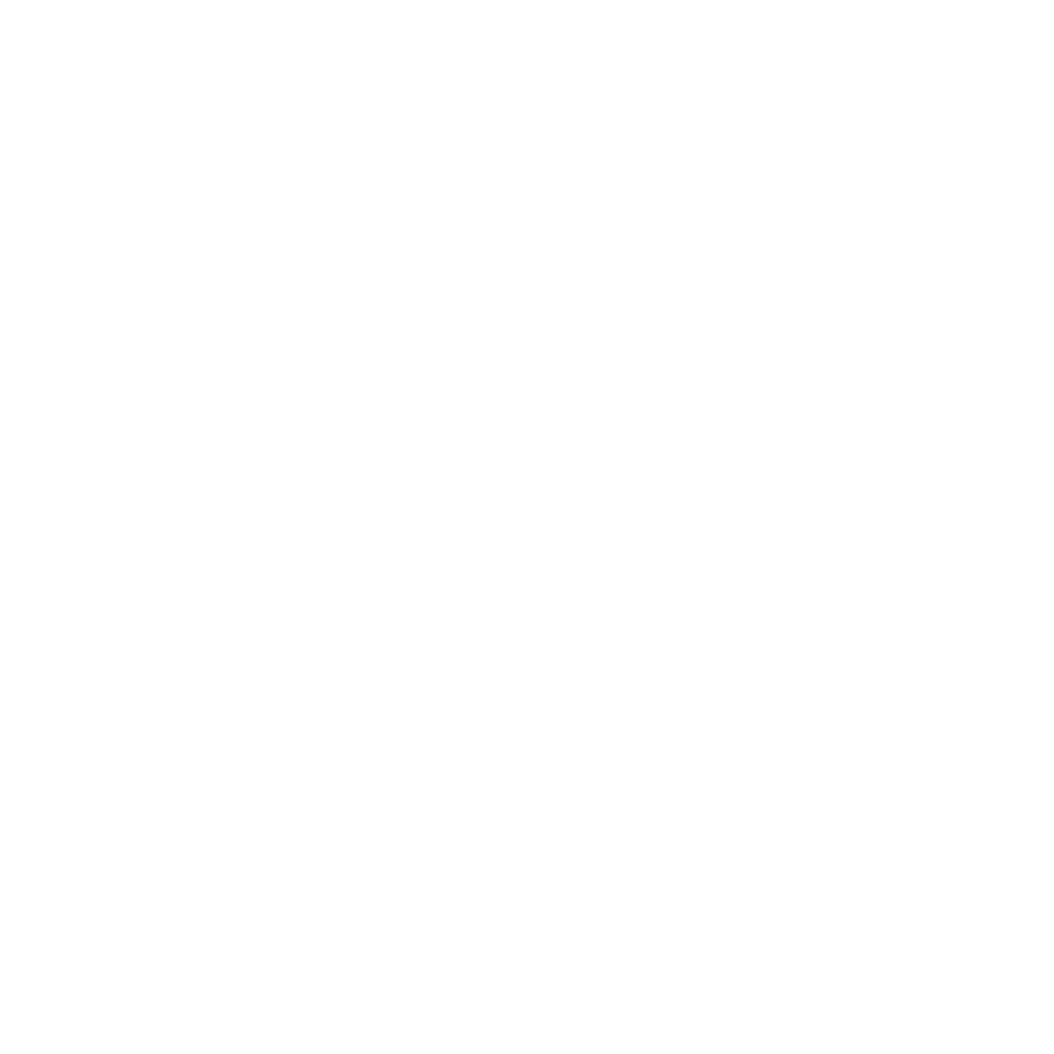 Emerson Adventure Co.
