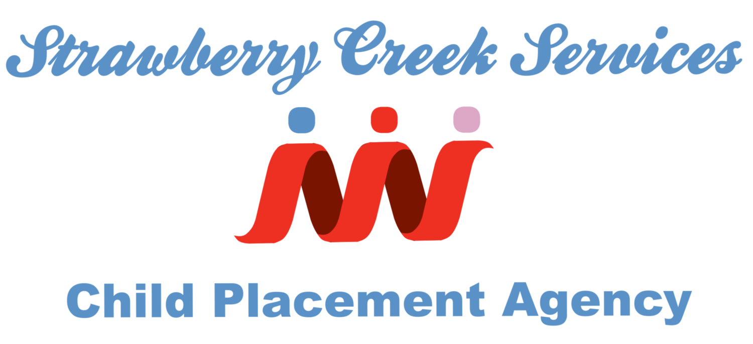Strawberry Creek Services