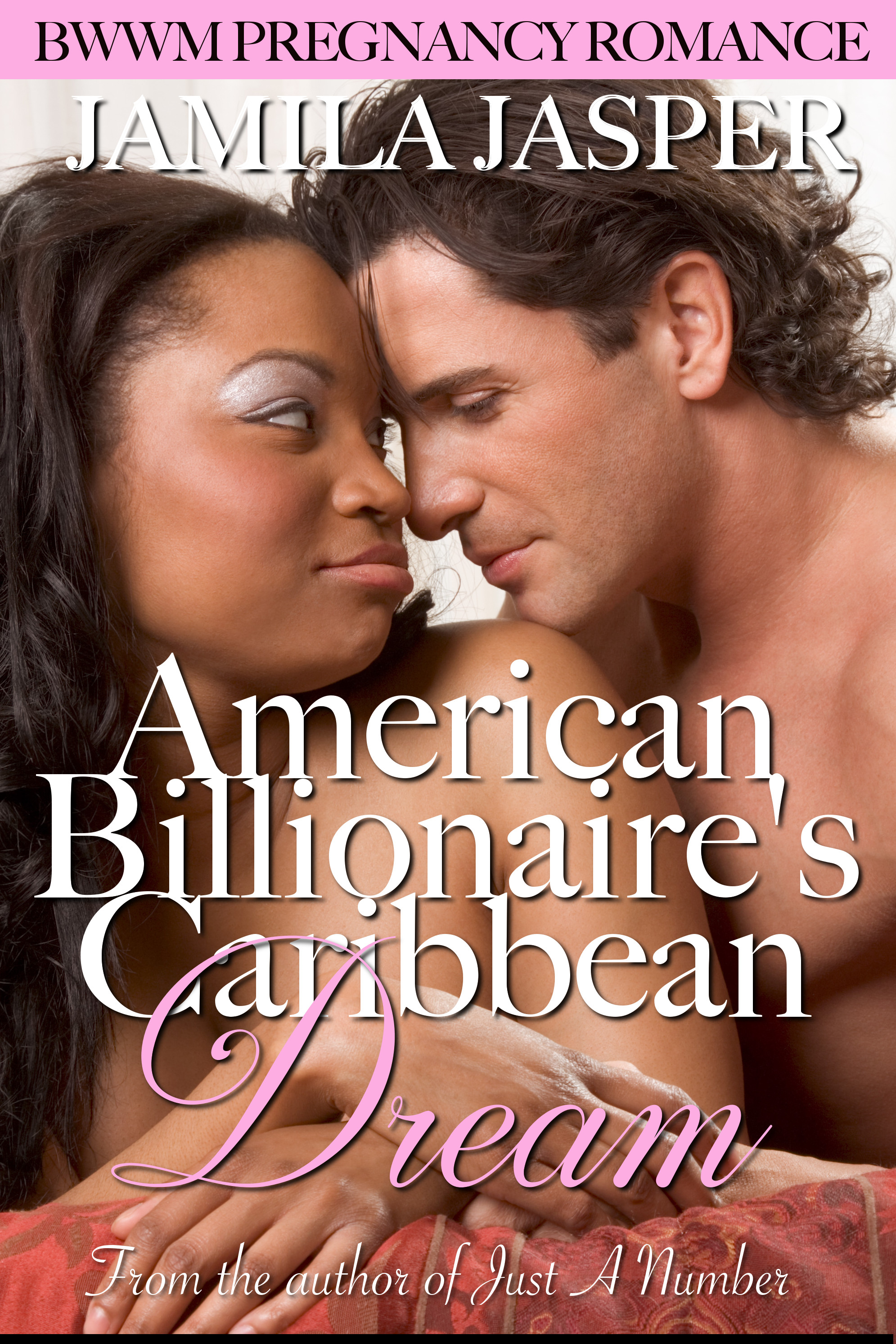 Romance Novel Excerpts - American Billionaire's Caribbean Dream