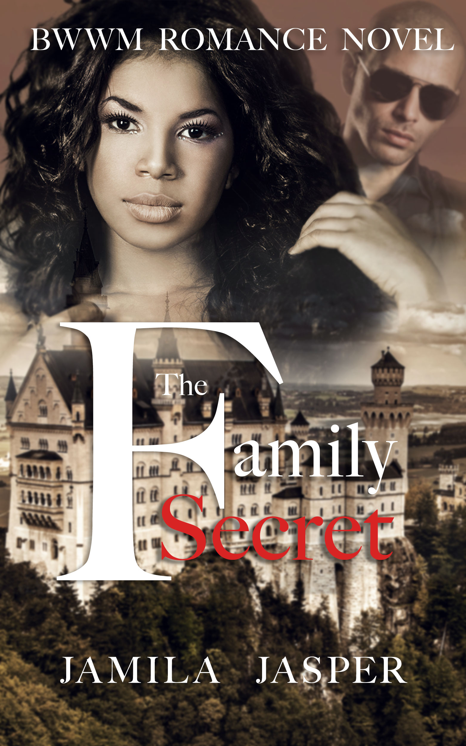 our best contemporary romance novels jamila jasper the family secret