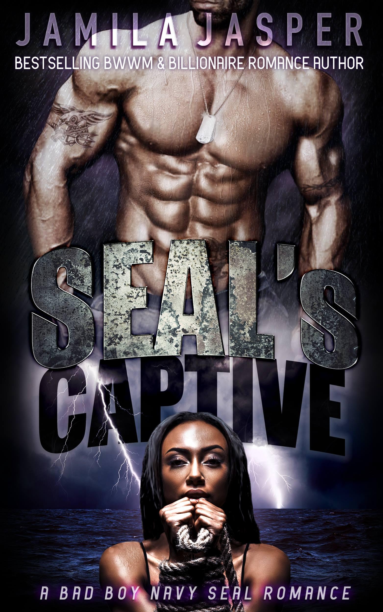 Dark Romance Books | SEAL's Captive | Book #1 BWWM Captive