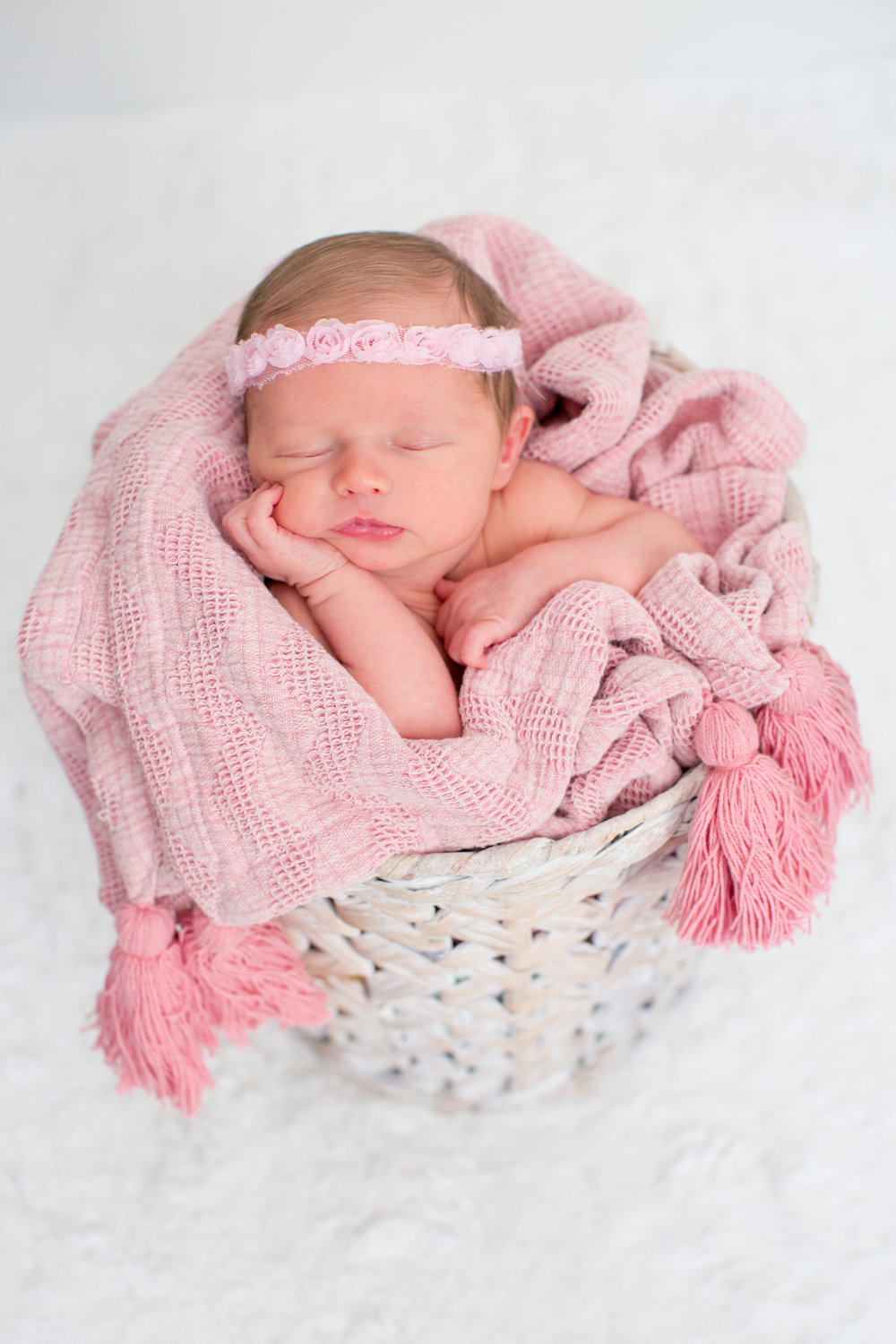 Highland_Park_Illinois_Newborn_Photographer_2.jpg