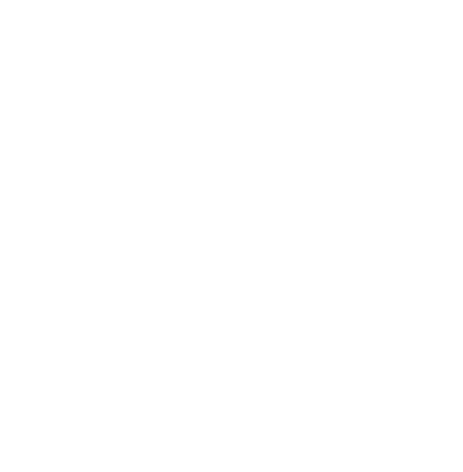 National African American Fellowship - SBC
