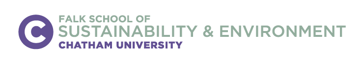 Executive Education at Falk School of Sustainability & Environment