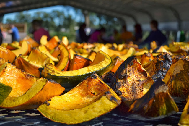 We visited Venetucci Farm to help prepare pumpkins for Bristol's ultra-popular Pumpkin Ale.