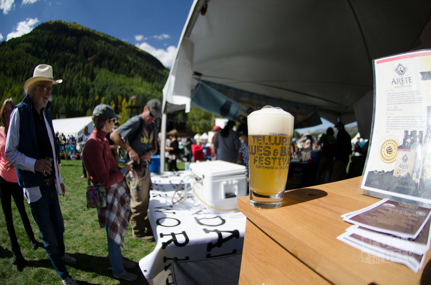 blues-and-brews-beer-fest-24