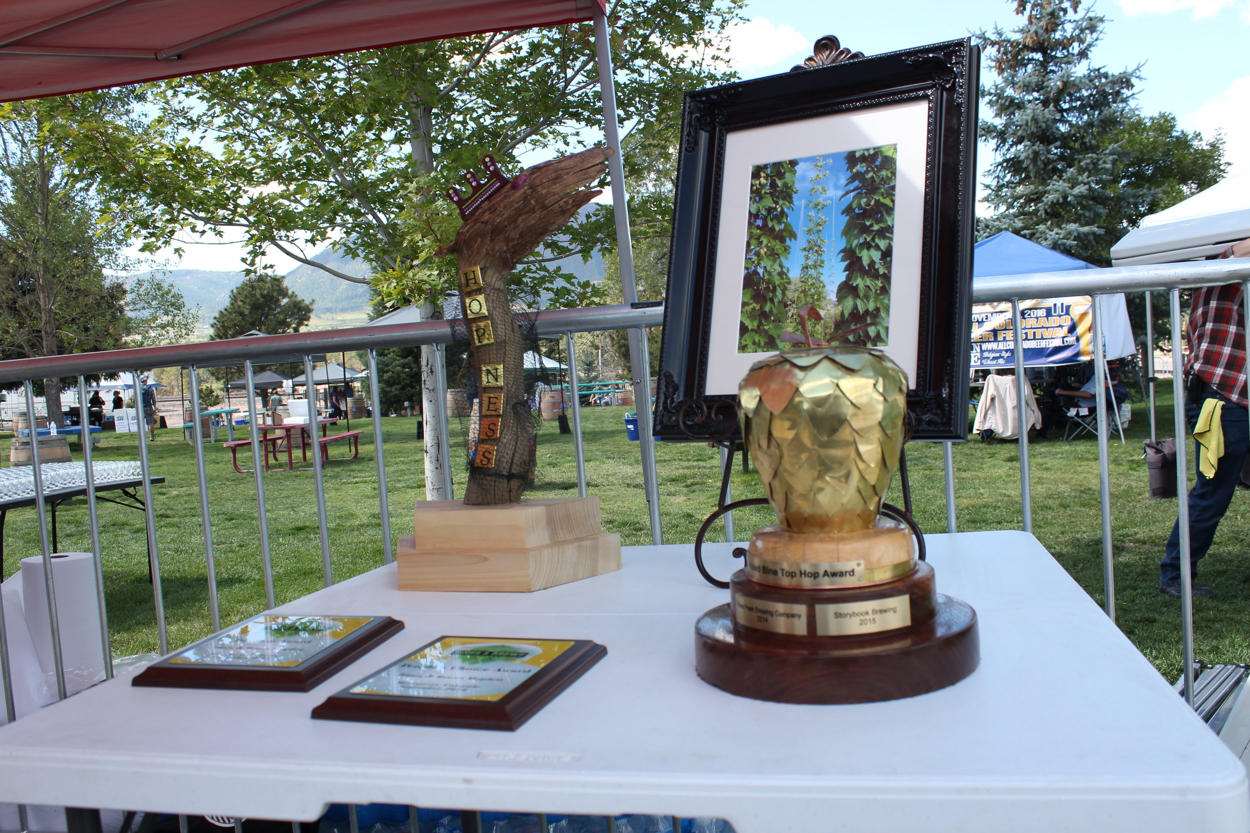 Trophies to be had at Bines and Brews
