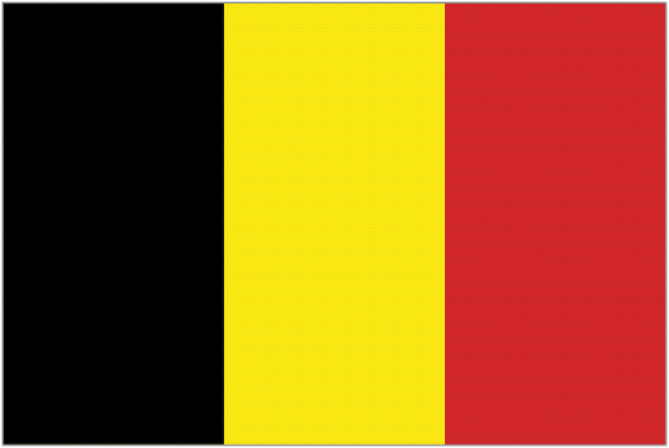 The Belgium Flag