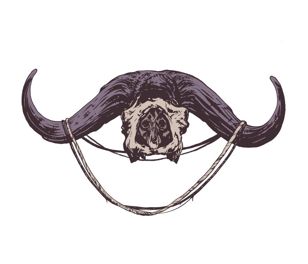 buffalo skull 2.jpg