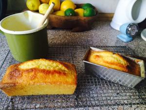 Lemon tea cakes awaiting lavender glaze.