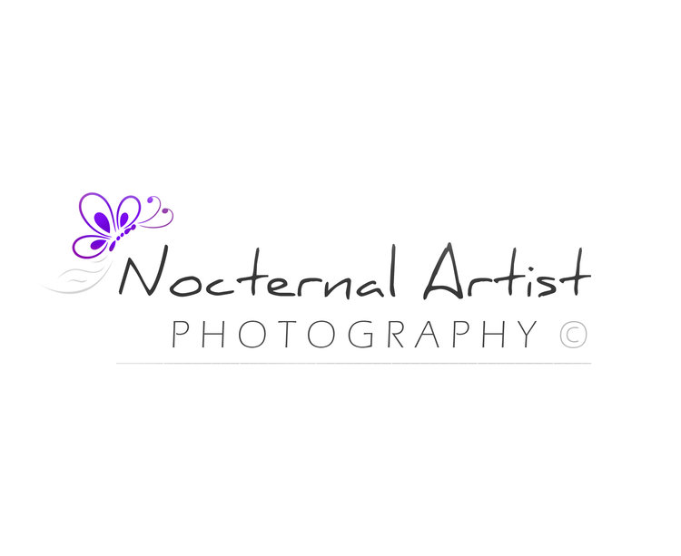 Nocternal Artist Photography
