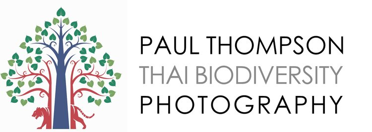 Paul Thompson Conservation Photographer