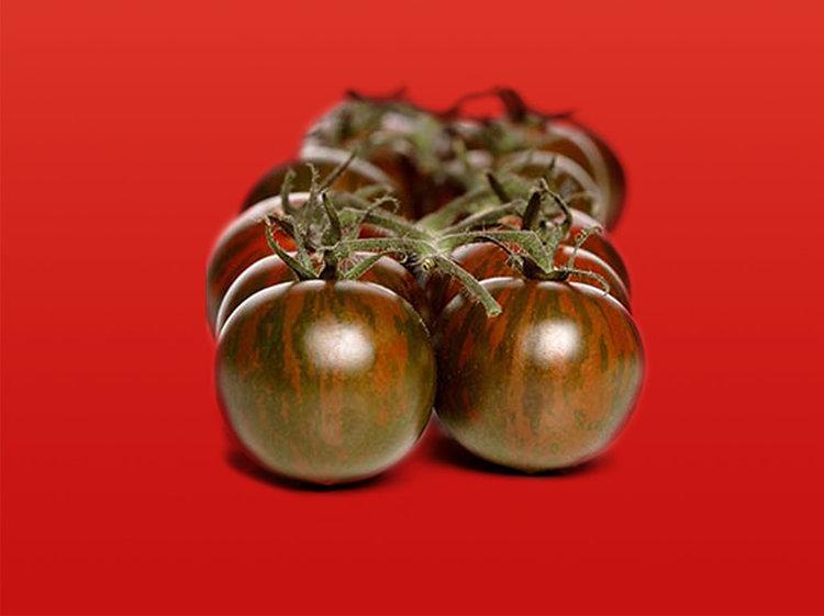 Tomate cerise noire (Tom'Chocolat)