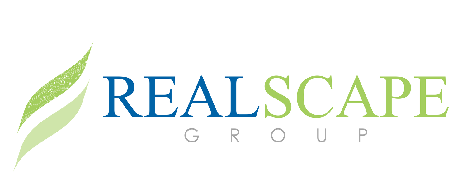REALSCAPE GROUP - Contemporary Technology Solutions