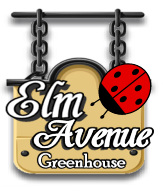 Elm Avenue Greenhouse