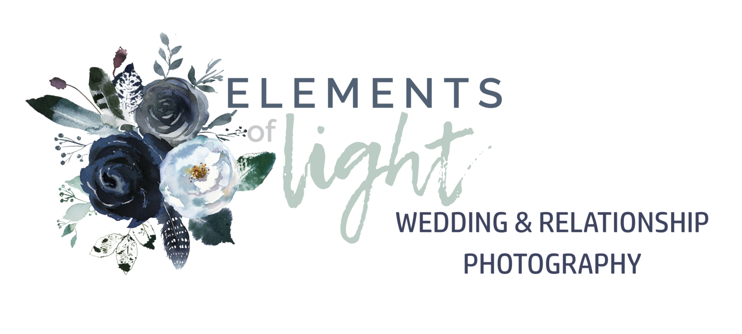 Elements of Light Photography