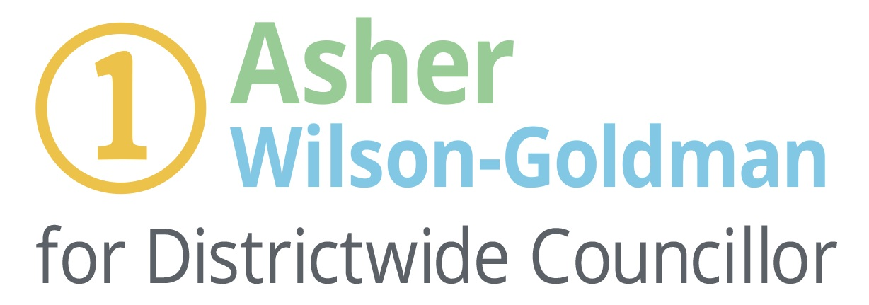 Vote #1 Asher for Kāpiti Coast