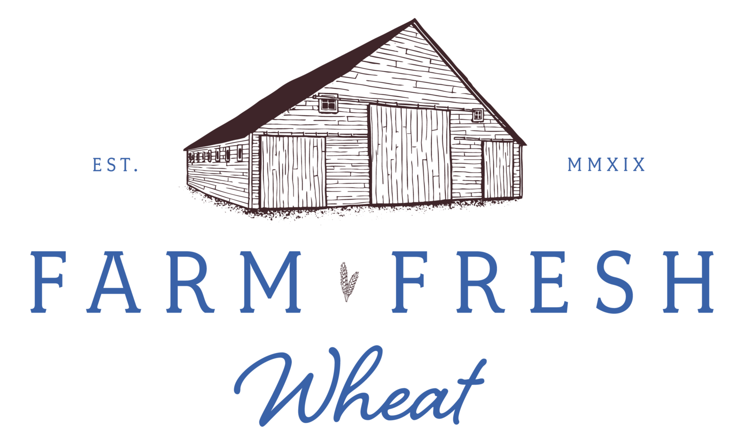 Farm Fresh Wheat | White Wheat Berries for Home Milling