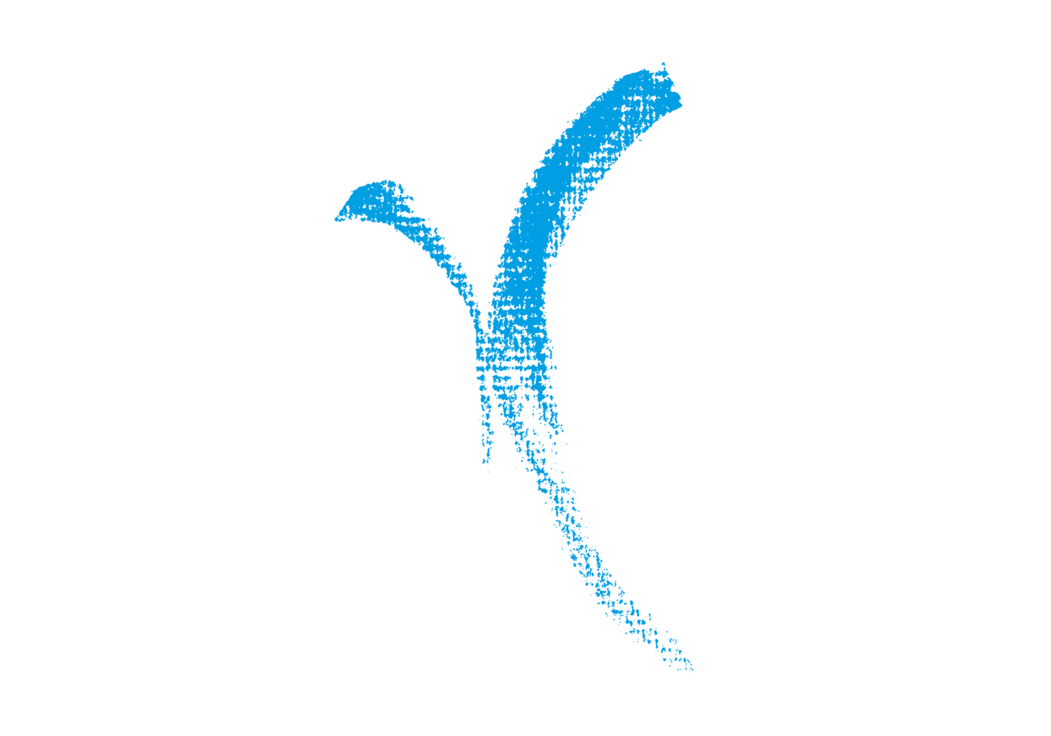 Limitless Movement
