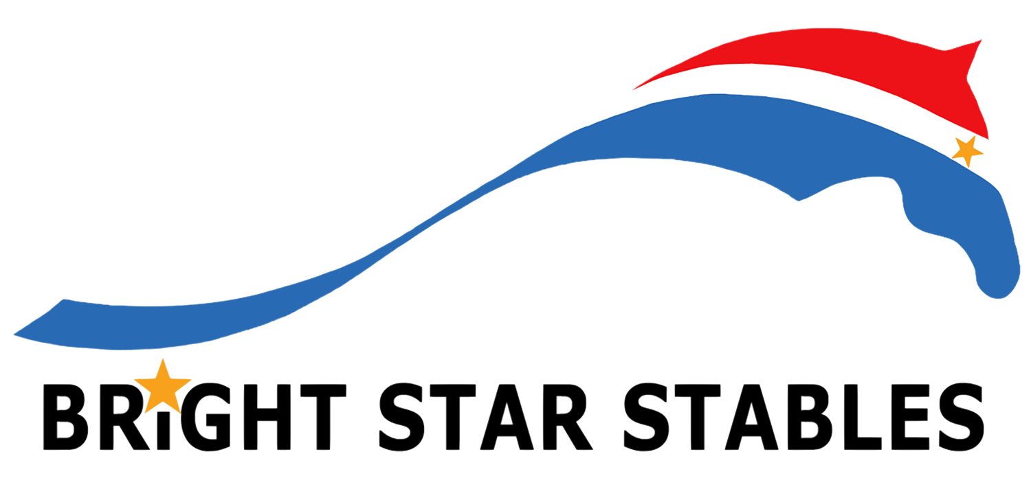 BRIGHT STAR STABLES