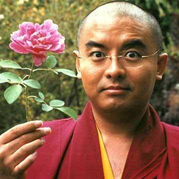 mingyur-rinpoche