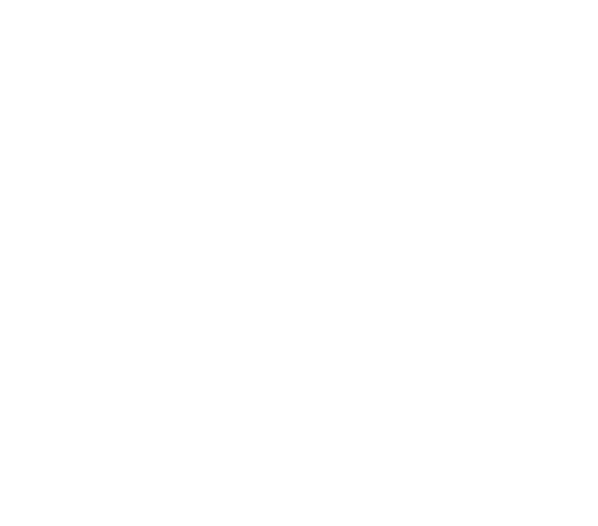 Bloom Word