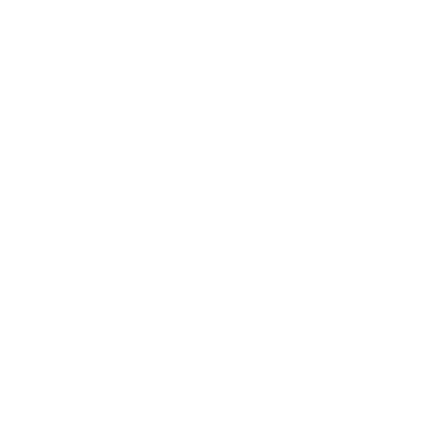 Cross Cultural Youth Project