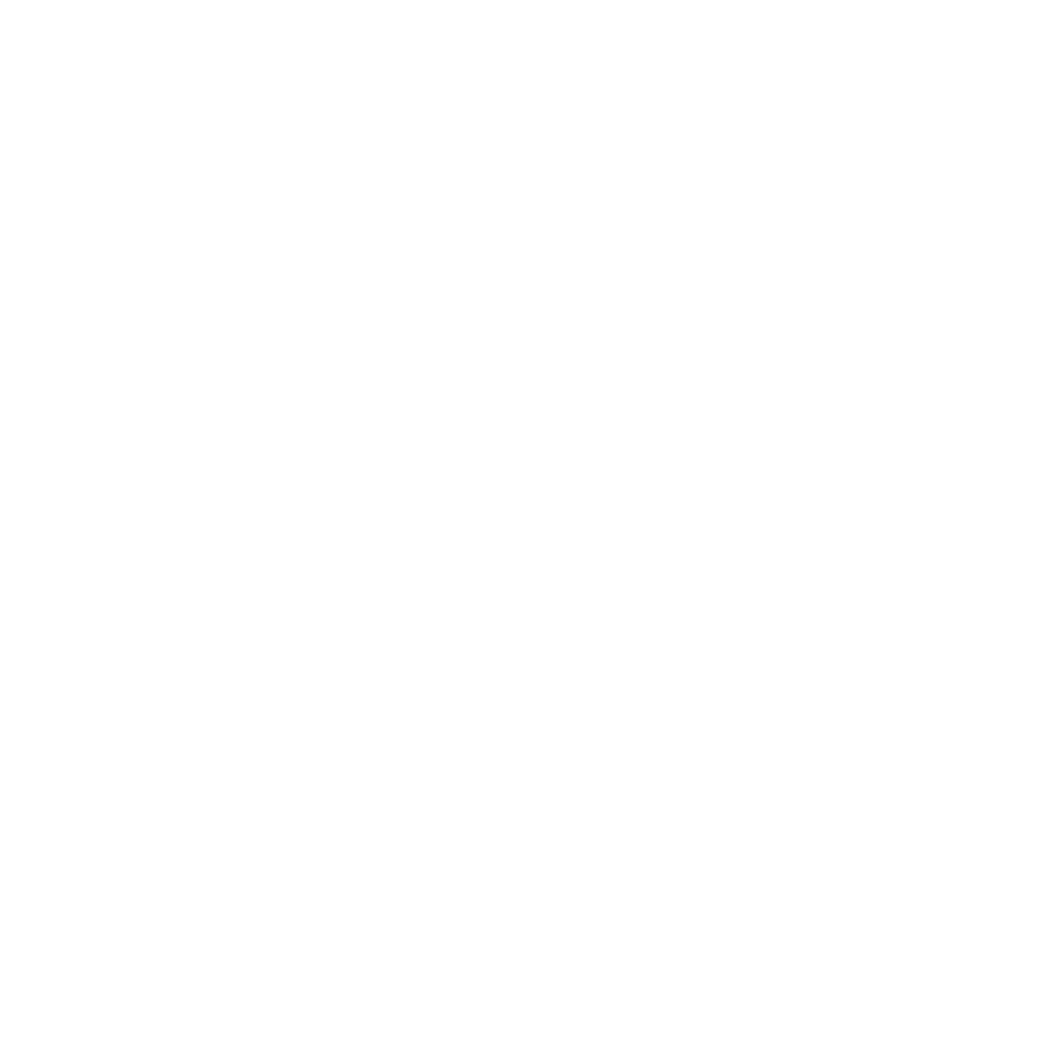 Zina for Congress
