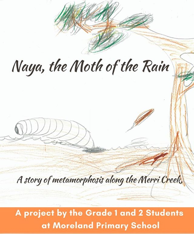 ~All welcome to Naya, the moth of the rain's book launch~ Monday 9th December 5:30 pm @ Coburg library (Victoria St/Louisa St, Coburg) #coburglibrary #moth #metamorphosis #moreland #wurundjeriland
