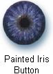 process_iris2.jpg