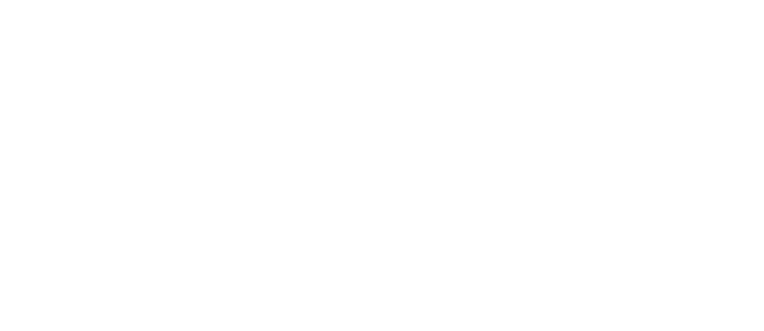 Denae Jonessa Photography