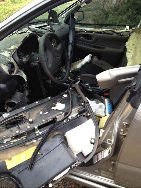 Interior of Molly's car after the bear got out (click to make it bigger)