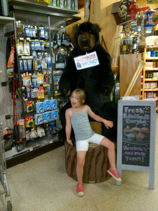 Bruno-the-bear