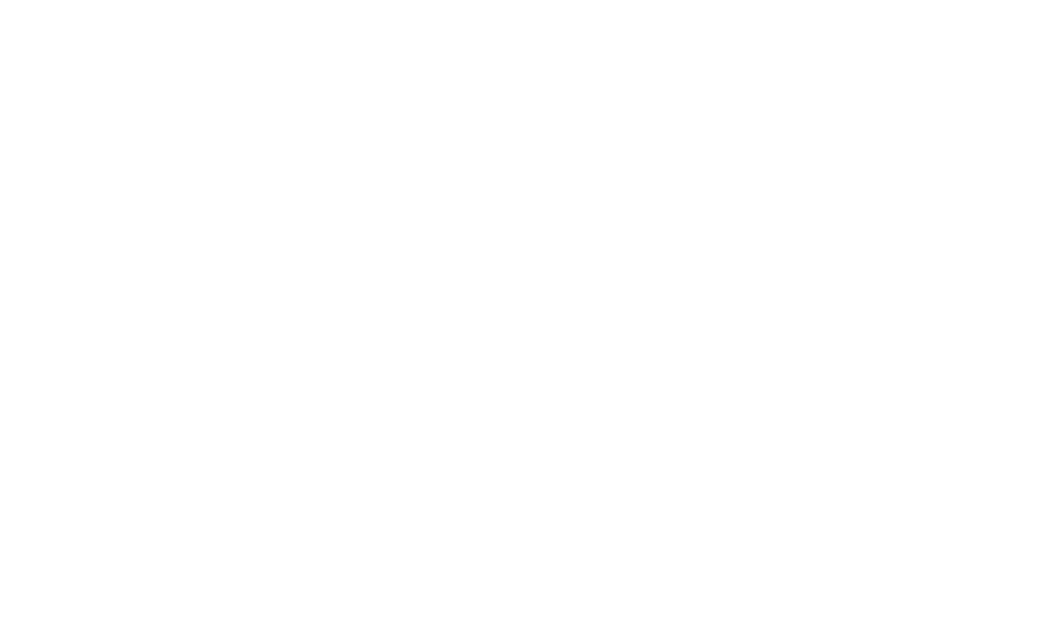 Zeus Electric Motorsport