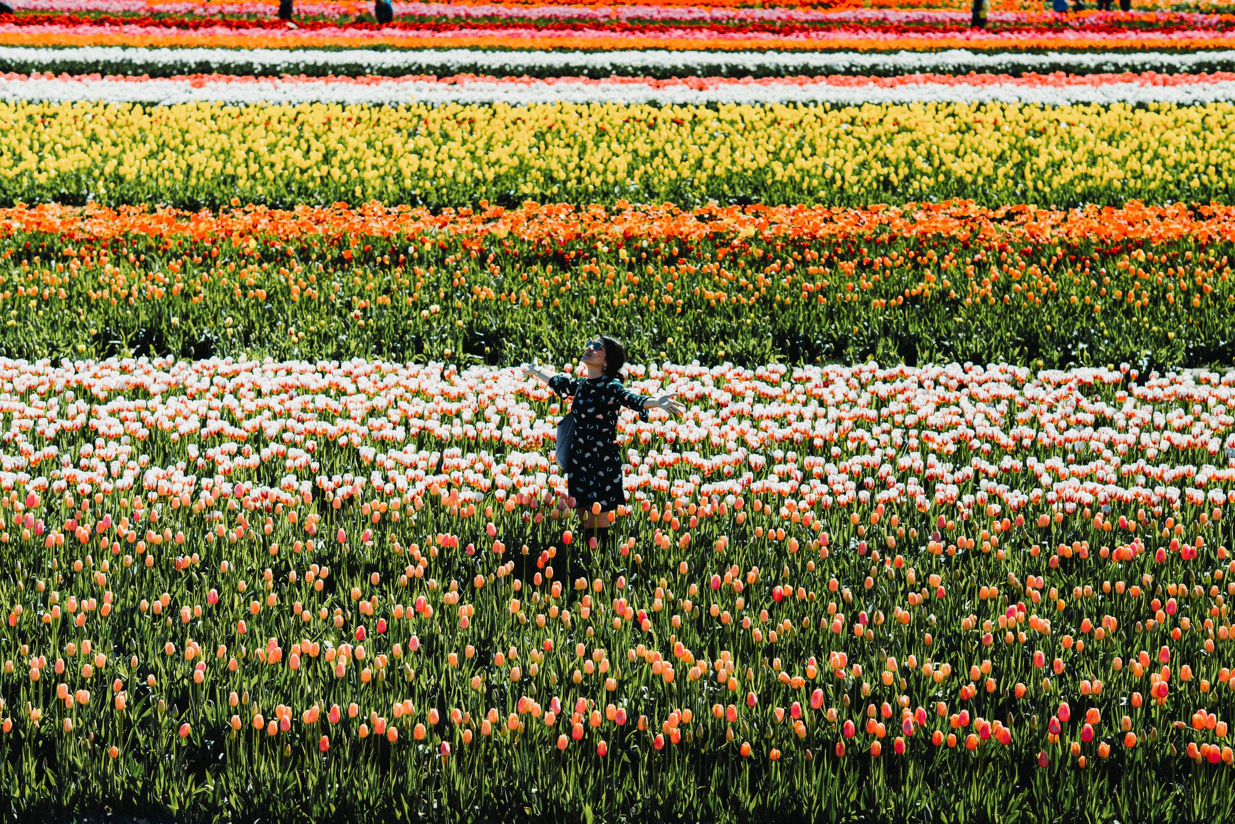 green floral dress tulip farm-2778