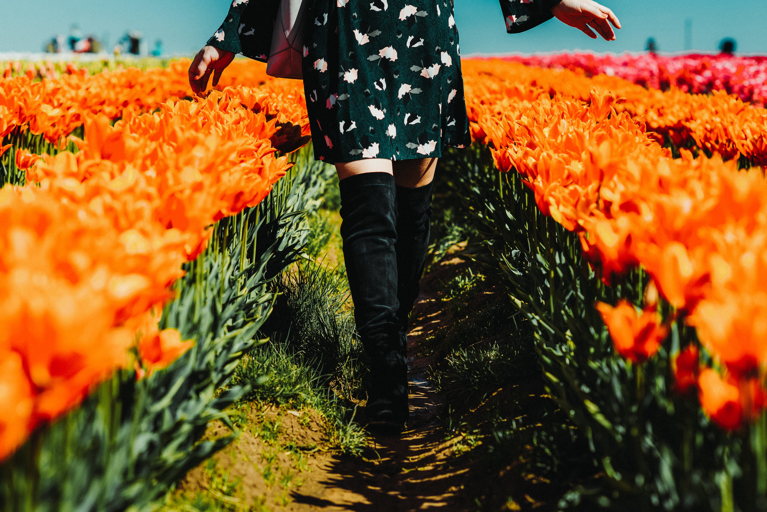 green floral dress tulip farm-2916